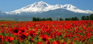 Mount Sabalan climbing
